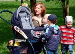 Куда можно тратить материнский капитал в 2014 году?